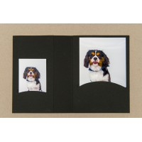 Mapa, zgibanka, album z žepkoma za fotografije do 4x6 cm in 10x15 cm ali CD/DVD, črna