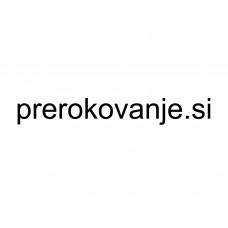 Prerokovanje.si - domena